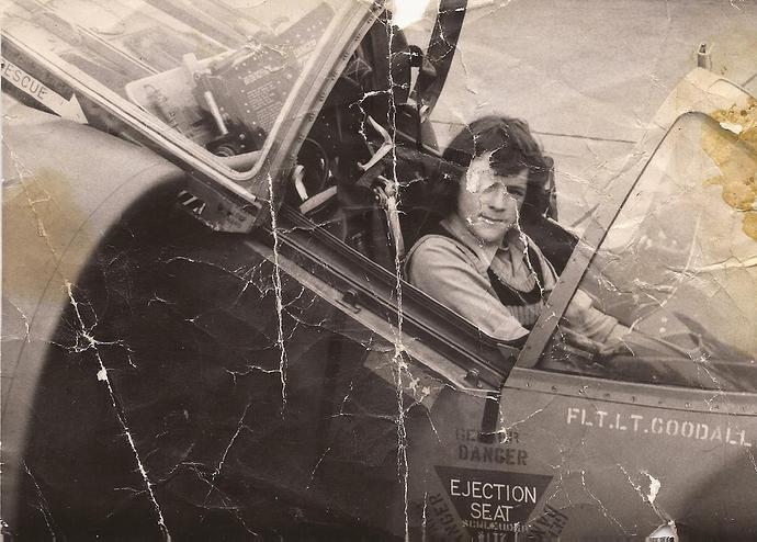 1 Wildenrath Harrier original GR1