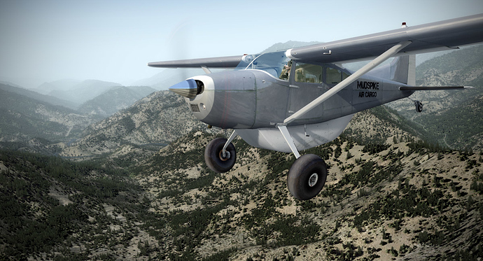 CARGO-313