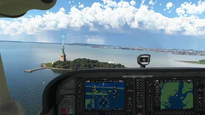 Microsoft Flight Simulator (8)