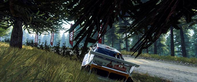 Dirt Rally 2 Screenshot 2020.05.25 - 09.35.22.80